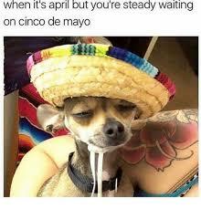 Cinco De Mayo Meme - when its april but you re steady waiting on cinco de mayo meme on
