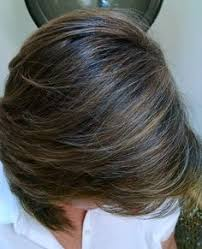 how to put highlights in gray hair formula the perfect silver color melt career silver color