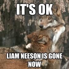 Liam Neeson Memes - taken masculinity memes and liam neeson linnet moss