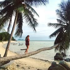 koh phangan thailand u2013 brunch and palm trees