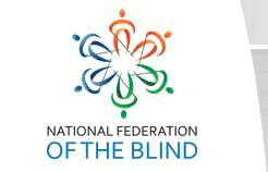 New Mexico Library For The Blind Blindness Statistics National Federation Of The Blind