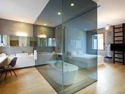 Interesting Interior Design Ideas Glass Dividers In Bathroom Interesting Interior Idea