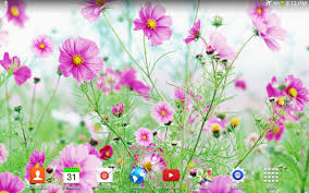 Flower Garden App by Sweet Flowers Live Wallpaper Android Apps On Google Play