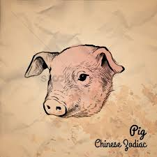 free pig face stock vectors stockunlimited