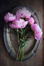 Peony Floral Arrangement 632 Best Peonies Images On Pinterest Flowers Pink Peonies And