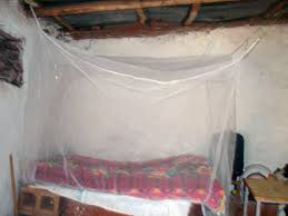 Mosquito Bed Net Provide A Mosquito Net To Safeguard A Family Globalgiving