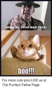 War Face Meme - 25 best memes about show me your war face show me your war