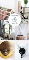 Homemade Cat Hammock by 25 Unique Crazy Toys Ideas On Pinterest Kids Outdoor Christmas