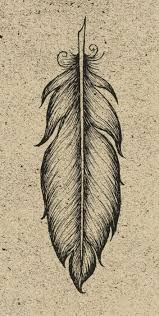 25 unique feather sketch ideas on pinterest how to draw