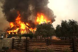 Wildfire Definition by At Least 10 Dead As Wildfires Rage Accrss California Wine Country