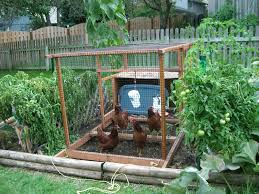 Backyard Garden Ideas 41 Backyard Raised Bed Garden Ideas 21 Beautiful Small Backyard