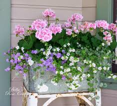 beautiful flowers in a galvanized washtub planter pink geraniums