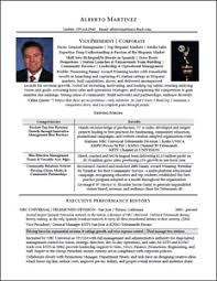 Example Of Resume Profile by Executive Resume U0026 Professional Resume Samples