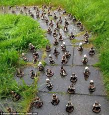 100 gnomes turn up in s front garden daily mail