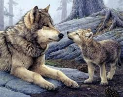 wolf and wolf cubs images search tattoos wolf