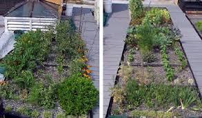 come realizzare un giardino pensile giardini pensile cool giardino pensile tecnica tetto verde