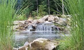 Waterfall Design Ideas Country Landscape Design Battle Ground Wa Photo Gallery