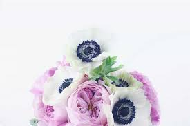 anemone flowers anemone care make cut flowers last longer the smell of roses