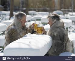 beer garden tables benches snow covered senior pair beer glasses
