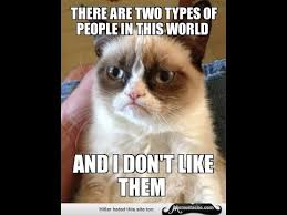 Meme Grumpy Cat - grumpy cat meme youtube