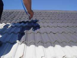 Roof Tile Paint Roof Renovation Silicone Roof Coatings