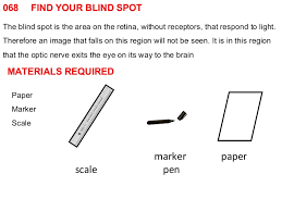 Finding Your Blind Spot In Your Eye How To Find Your Visual Blind Spot Best Blind 2017