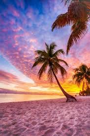 best 25 beach scenes ideas only on pinterest beach paintings sunset beach captured this shot of sunset at keywest florida