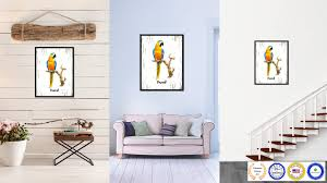 parrot bird gifts home decor wall art decoration livingroom