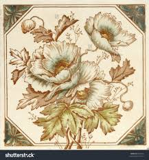 a hand coloured victorian period aesthetic design poppy flower