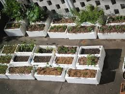 Concrete Planter Boxes by Spurtopia Our Sustainable Living Story Spurtopia U0027s Invention