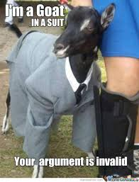 Cat Suit Meme - goat in a suit o 514213 w630