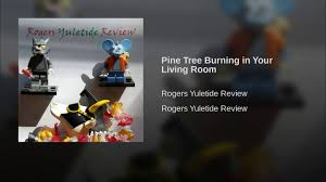pine tree burning in your living room