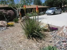 triyae com u003d high desert backyard ideas various design