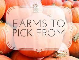 Local Pumpkin Farms In Nj by Little Lists Farms To Pick From Little Hoboken Blog