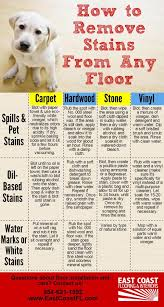 how to remove stains from any flooring