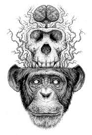best 25 monkey art ideas on pinterest monkey drawing art deco
