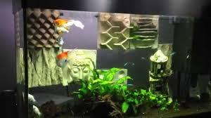 idee deco aquarium décoration aquarium original recif youtube