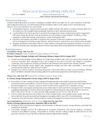 Management Consultant Resume Shidduch Resume Sle 11 Images 100 Resume Of Sap Mm Consultant