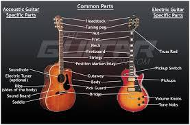 guitar anatomy theguitarlesson com