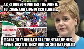 Funny Scottish Memes - anti snp memes anti snp twitter