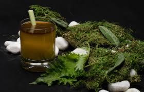 tea measure u0026 stir