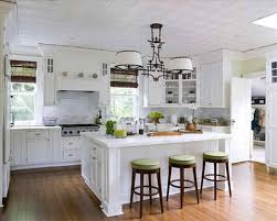 Blue Cute Kitchen Decorating Themes Kitchen Theme Ideas U