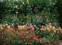 roll out flower garden cut flower seed garden mat instant garden roll n grow seeded