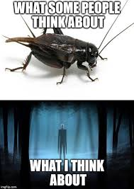 Crickets Chirping Meme - hearing crickets by ilovedecepticons on deviantart