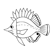 coloriage poissons de mer mer pinterest poisson de mer