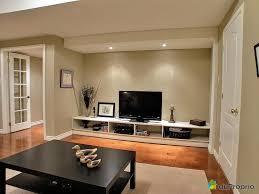 Basement Living Room Ideas Basement Living Home Design