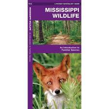 Mississippi wildlife tours images 274 best southern destinations mississippi images jpg