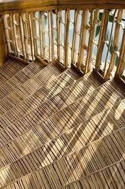 bambus design 127 besten bamboo architecture bilder auf gärten