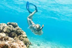 Wyoming snorkeling images Under the sea st martin snorkeling guide luxury retreats magazine jpg