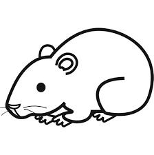 à imprimer animaux hamster numéro 7160